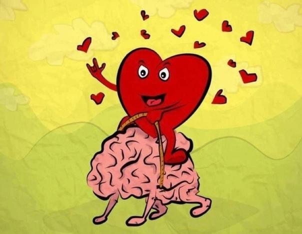 Как любовь меняет мозг и поведение человека